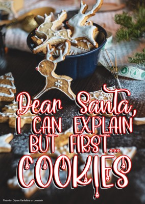 Dear Santa, I can explain