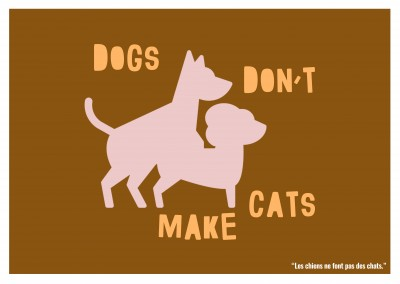 Expression drole franglais - dogs don t make cats