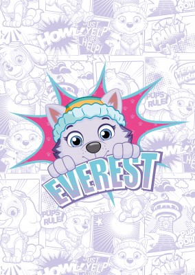 PAW Patrol postcard Everest