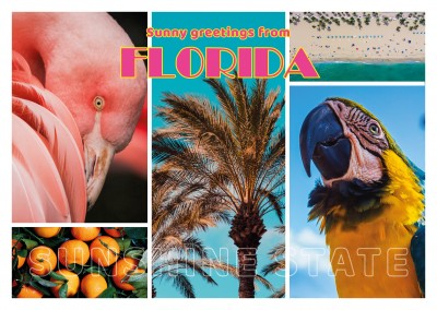 Fotocollage Florida retro Schrift, Papagei,Flamingo, Strand, Orangen, Palmen