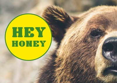 funny greeting card with a bear who says hey honey