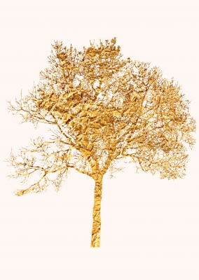 Kubistika, and again, another golden tree