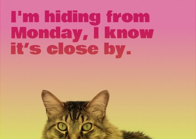 I am hiding from monday, I know it's close by