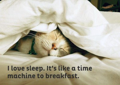 I love sleep. It's like a time machine to breakfast.