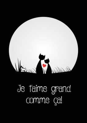 l'illustration des chats