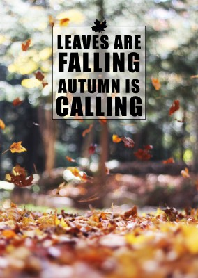 Spruch Karte Leaves are falling autumn is calling