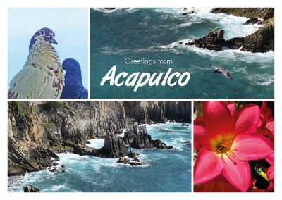 photocllage Acapulco rocks flower pigeons