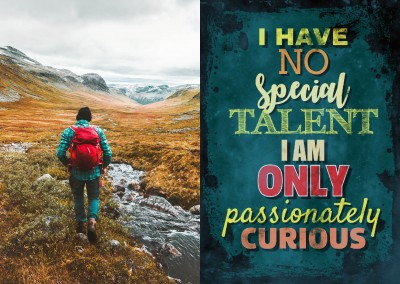 Vintage quote card I have no special talent i am only passionately curious