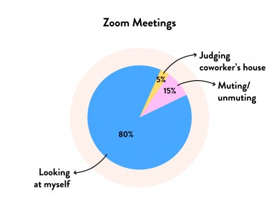 Pie chart - Zoom Meetings