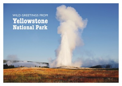 foto von geysir im yellowstone nationalpark