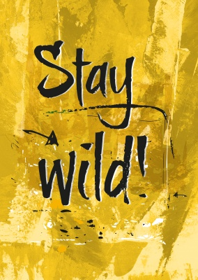 quote postcard stay wild