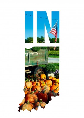 photo pumpkins sold next to the road with US flag