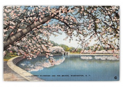 Washington DC, Chery Blossoms and Bridge