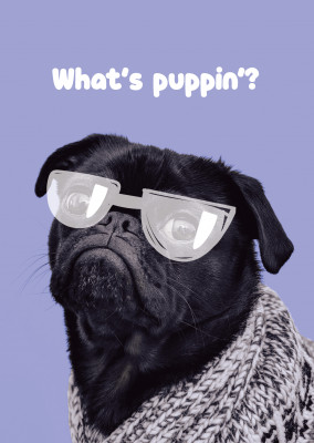 What's puppin?